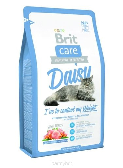Care Cat Daisy