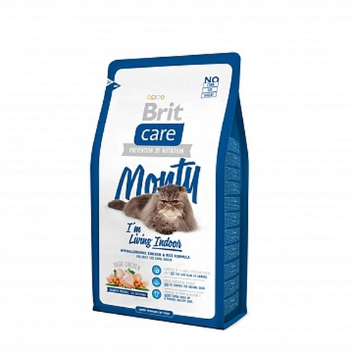 Care Cat Monty Indoor